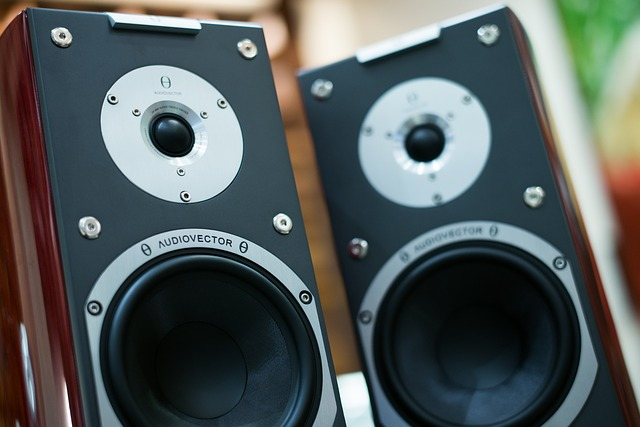 audioreproduktor