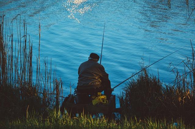 voda, rákos, rybář, pruty