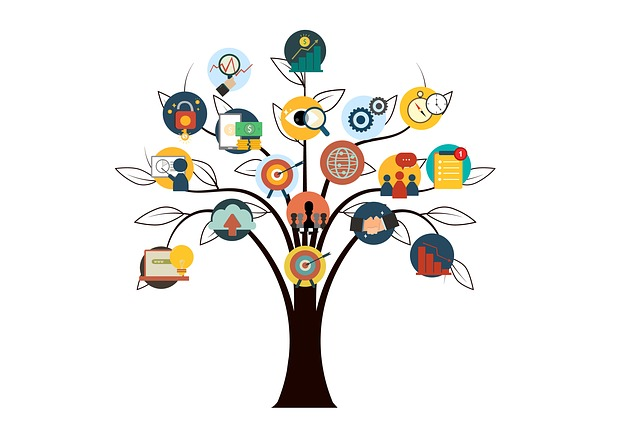 strom dovedností