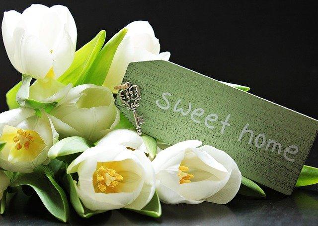 tulipány, nápis sweet home