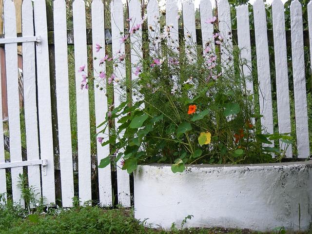 klasický dřevěný plot