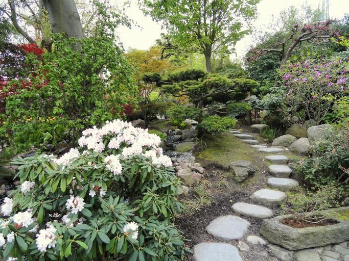 upravený park, zahrada
